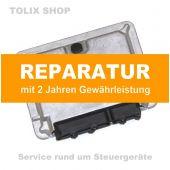 Reparatur Motorsteuergerät  ECU 038906018xx 038 906 018 xx für Audi, VW, Skoda & Seat 1.9TDI