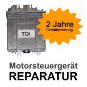 Reparatur Motorsteuergerät 074906021L 074 906 021 L 0281001640 0 281 001 640 ECU